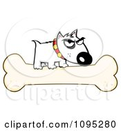 Mean White Bull Terrier Dog On A Bone by Hit Toon