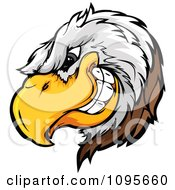 Clipart Grinning Bald Eagle Mascot Head Royalty Free Vector Illustration by Chromaco