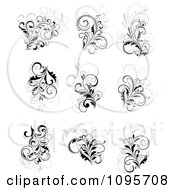Black Gray And White Flourish Design Elements