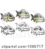 Clipart Green And Black And White Piranha Fish Royalty Free Vector Illustration
