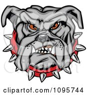 Tough Gray Bulldog Face With A Red Spiked Collar