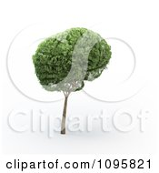 Clipart 3d Tree Brain Royalty Free CGI Illustration by Mopic