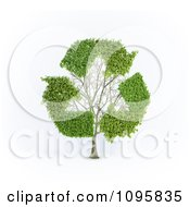 Clipart 3d Tree With Recycle Arrow Branches Royalty Free CGI Illustration by Mopic