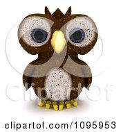3d Brown Owl