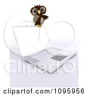 3d Brown Owl Resting On A Laptop