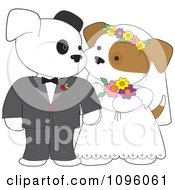 Two Wedding Puppies Gazing At Each Other During Their Marriage Ceremony