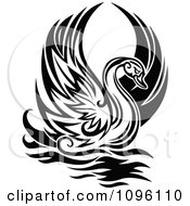 Clipart Lone Black And White Graceful Swan Raising Its Wings Royalty Free Vector Illustration by Vector Tradition SM