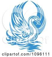 Lone Blue Graceful Swan Raising Its Wings