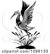 Clipart Black And White Wading Crane Royalty Free Vector Illustration