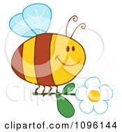 Clipart Happy Bee Flying With A White Daisy Flower Royalty Free Vector Illustration