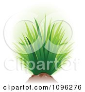 Clipart Tuft Of Green Grass And Soil Royalty Free Vector Illustration