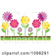 Clipart Colorful Daisies In A Garden Royalty Free Vector Illustration