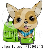 Happy Chihuahua In A Green Dog Carrier Bag