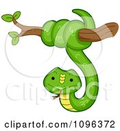 Clipart Happy Green Snake Coiled Around A Tree Branch Royalty Free Vector Illustration