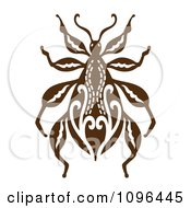 Ornate Brown Beetle