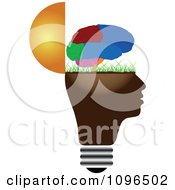 Clipart Colorful Brain Over A Grassy Open Light Bulb Head Royalty Free Vector Illustration by Andrei Marincas