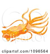 Clipart Orange Squid Royalty Free Illustration by Alex Bannykh