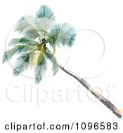 Clipart 3d Palm Tree Royalty Free Vector Illustration by dero