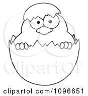 Clipart Outlined Easter Chick In A Shell Royalty Free Vector Illustration by Hit Toon
