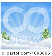 Clipart Snowy Christmas Winter Background With Evergreens And Sunshine Royalty Free Vector Illustration