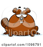 Clipart Depressed Chubby Beaver Royalty Free Vector Illustration