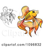 Clipart Orange And Black And White Goldfish Royalty Free Vector Illustration