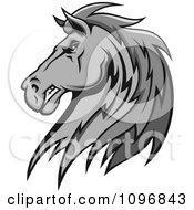 Clipart Gray Stallion Head Royalty Free Vector Illustration