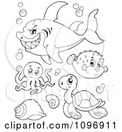 Clipart Outlined Mean Shark Octopus Puffer Fish And Sea Turtle Royalty Free Vector Illustration