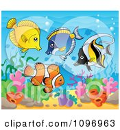 Clipart Tropical Saltwater Fish In The Sea Royalty Free Vector Illustration