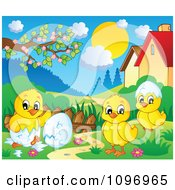 Clipart Hatching Spring Chicks In A Meadow Royalty Free Vector Illustration