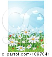 Clipart Background Of Red And White Spring Wildflowers In Grass Under A Sunny Sky Royalty Free Vector Illustration