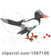 Clipart Magpie Eating Red Berries Royalty Free Vector Illustration