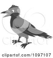 Clipart Happy Magpie Royalty Free Vector Illustration by Alex Bannykh