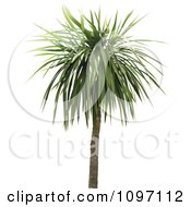 Clipart 3d Tropical Palm Tree 2 Royalty Free Vector Illustration by dero
