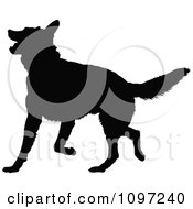 Clipart Black Silhouette Of A Playful German Shepherd Dog Royalty Free Vector Illustration by Maria Bell
