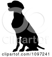 Clipart Black Silhouette Of A Sitting German Pointer Dog Royalty Free Vector Illustration