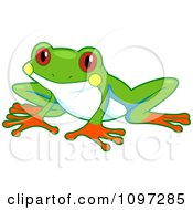 Clipart Cute Red Eyed Tree Frog Royalty Free Vector Illustration