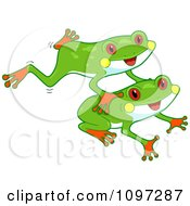 Two Cute Red Eyed Tree Frogs Leaping