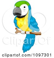 Clipart Cute Macaw Parrot Perched On A Branch Royalty Free Vector Illustration