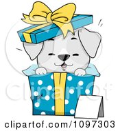 Poster, Art Print Of Cute Gray Puppy Popping Out Of A Polka Dot Gift Box