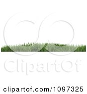 Clipart 3d Website Border Of Green Grass Royalty Free CGI Illustration by KJ Pargeter