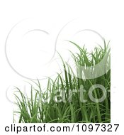 Clipart Background Of 3d Grass Blades Royalty Free CGI Illustration