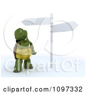 3d Tortoise Looking Up A Street Signs At A Crossroads