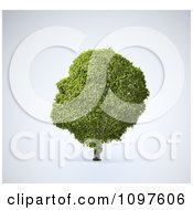 Clipart 3d Green Head Shaped Tree Royalty Free CGI Illustration by Mopic