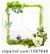 Green Spring Time White Rose Frame With Butterflies