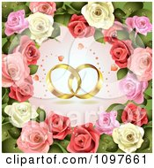 Engagement Or Wedding Background Golden Rings And Dewy Roses