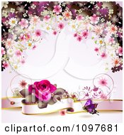 Valentines Day Or Wedding Background With A Pink Rose Banner Butterfly And Blossoms