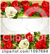 Valentines Day Or Wedding Background With Red And White Dewy Roses And Copyspace