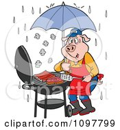 Chef Pig Barbequing With An Umbrella In The Rain