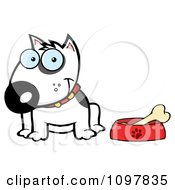 Clipart Happy White Bull Terrier Sitting By A Dish With A Bone Royalty Free Vector Illustration
